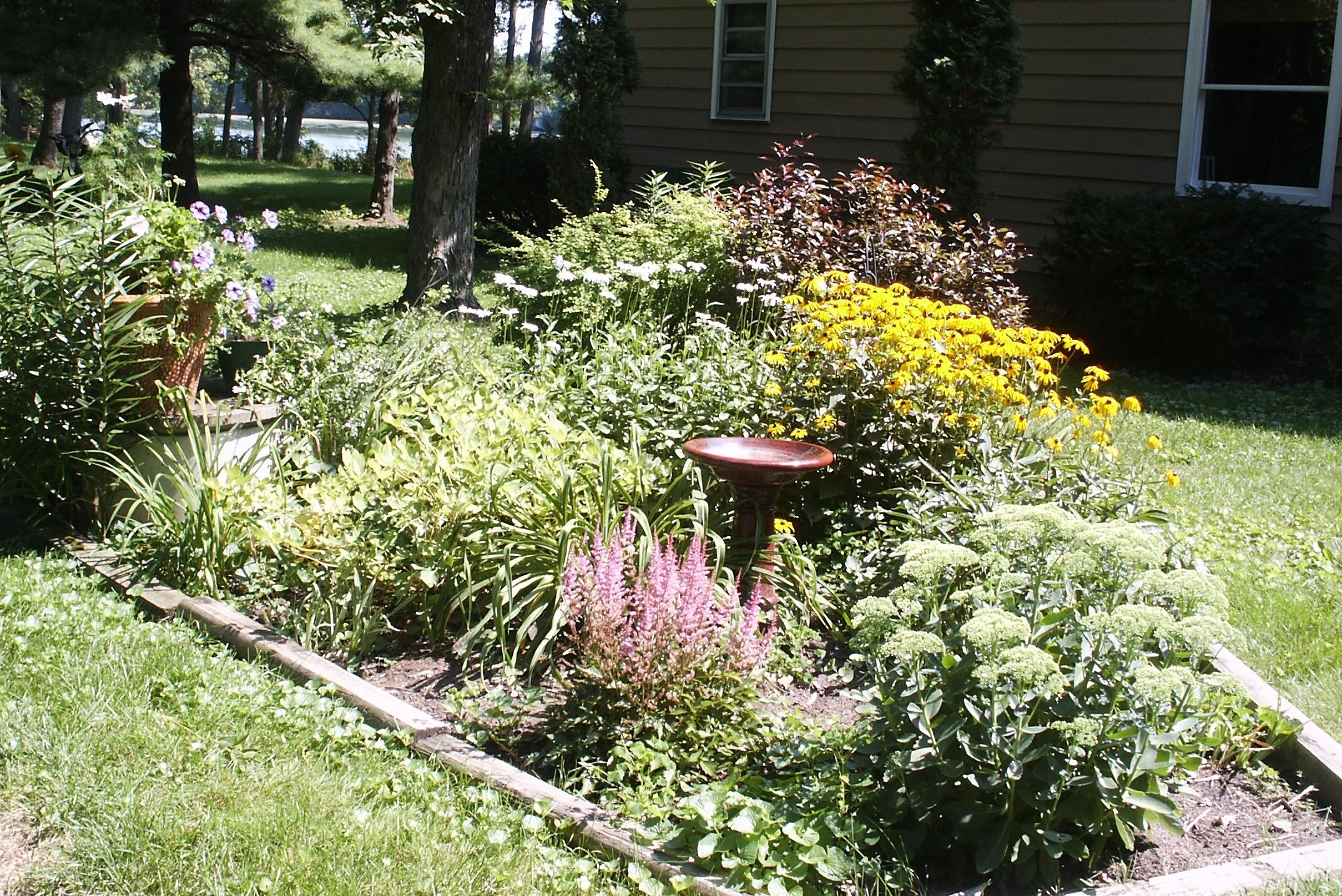 mom's garden cropped