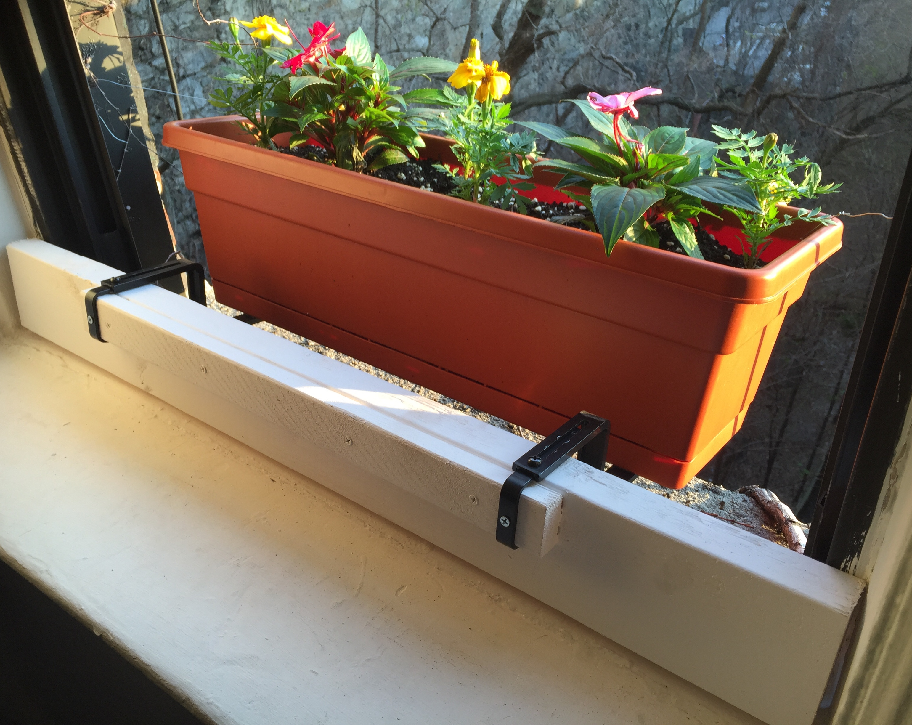 window box set up